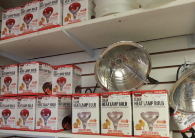 Heat Lamps and Bulbs